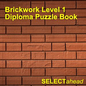 Brickwork Level 1 Diploma Puzzle Book
