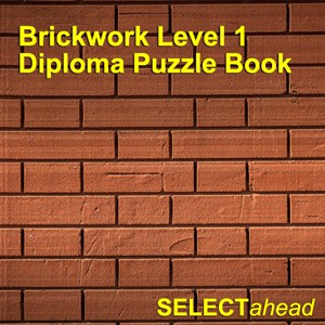 Brickwork Level 1 Diploma Puzzle Book