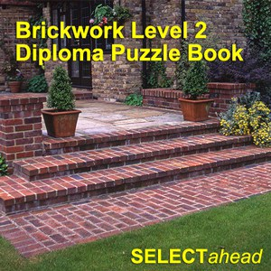 Brickwork Level 2 Diploma Puzzle Book