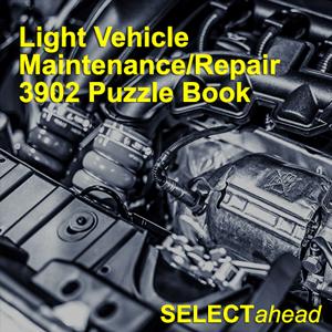 Light-Vehicle-Maintenance